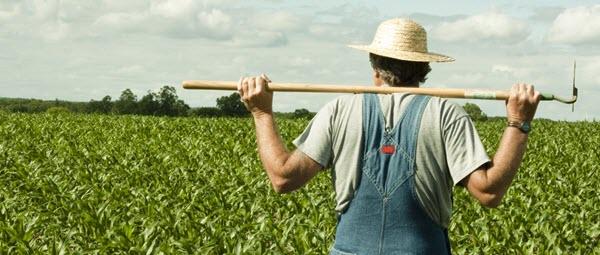 ماشین آلات و تجهیزات کشاورزی، ساختمانی و صنعتی